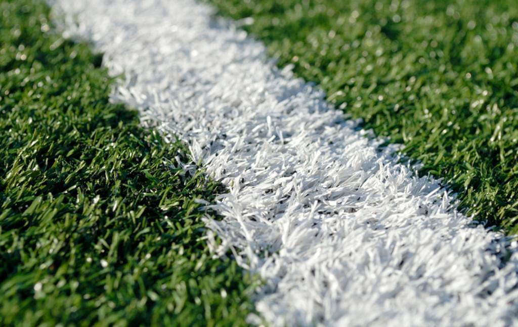 球场运动草
