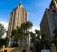 钻石地毯经典案例-桐乡振石大酒店