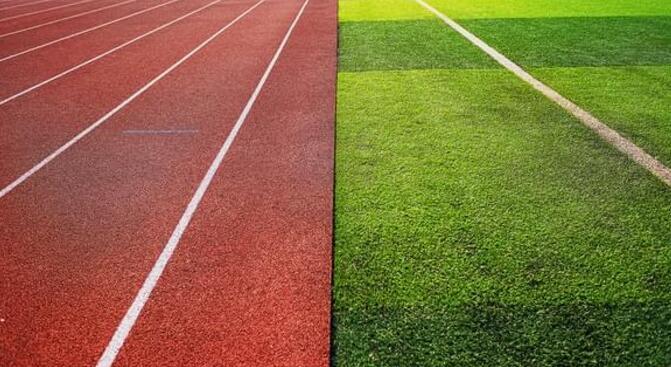 钻石地毯--运动场可以安装人造草坪吗?