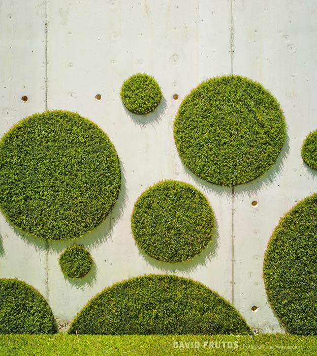 钻石地毯--人造草坪可以上墙,你想象过吗?