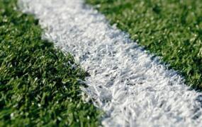 钻石地毯--人造草制造中有特殊纱线吗?
