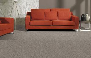 塞纳河-系列-客房/办公室/会议室尼龙地毯