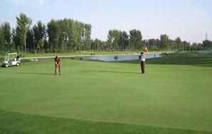 高档人造草坪---高尔夫 系列