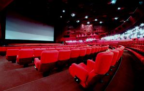 JX-L系列-电影院/客房/办公室/会议室/走道化纤地毯