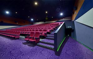 DYY01系列-电影院/办公室/会议室/走道尼龙印花地毯