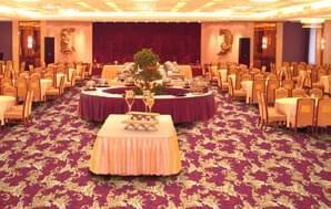 威尔顿0216系列-餐厅/走道/KTV/会所威尔顿丙纶地毯