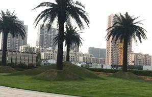 人造草坪---场景草 系列